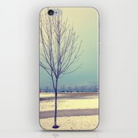 Okanagan Winter Blues iPhone & iPod Skin