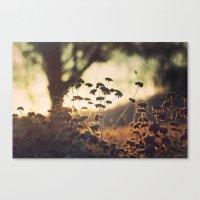 Days blur into one Canvas Print