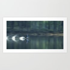 BLACK-THROATED DIVER Art Print