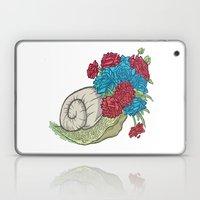 Snail Laptop & iPad Skin
