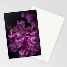 Red Bud Blossoms  Stationery Cards
