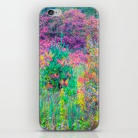 A Walk Among The Colors … iPhone & iPod Skin