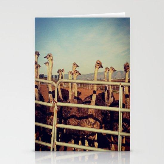 Ostrich Farm Stationery Card