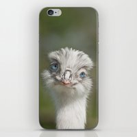 Adorable Flirt iPhone & iPod Skin