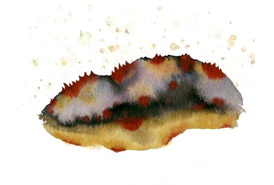 Poppy hills Art Print