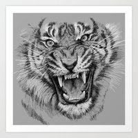 Tiger Drawing Black and White Animals Art Print