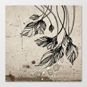Drooping leaves Canvas Print