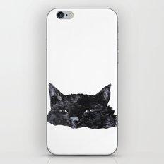 zzz cat iPhone & iPod Skin