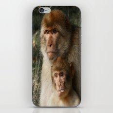 Cheeky Monkey iPhone & iPod Skin