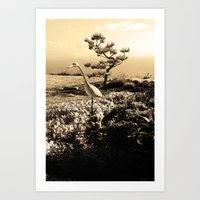 Master in Sepia Art Print