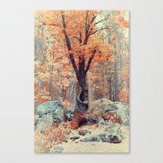 Old New Oak at Autumn Canvas Print