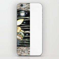 Link&Navi iPhone & iPod Skin