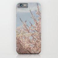Sweet & Blue iPhone 6 Slim Case