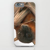 Little Red Flying Fox Hanging Out iPhone 6 Slim Case