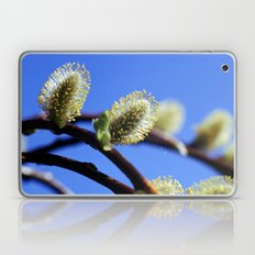 Willow Catkins Laptop & iPad Skin