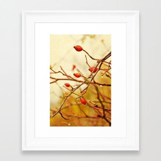 vintage rosehips Framed Art Print