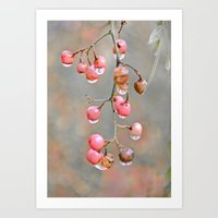 Berries And Raindrops Art Print