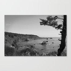 Patricks Point State Park Canvas Print