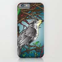 Perch iPhone 6 Slim Case