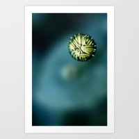 Enclosed Art Print