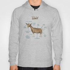 Anatomy of a Goat Hoody