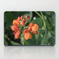 bright orange bean flowers. garden vegetable plant photography. iPad Case