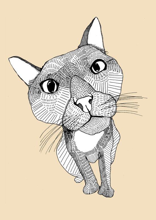 BigHead Cat Canvas Print