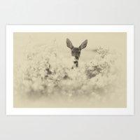 Roe Deer Art Print