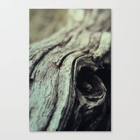 Knot Canvas Print