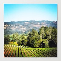 Canvas Print featuring Napa Valley by Daniel Clifford