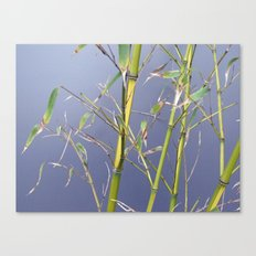 Bamboo leggings Canvas Print