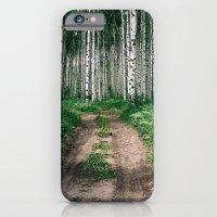 Aspen Trees iPhone 6 Slim Case
