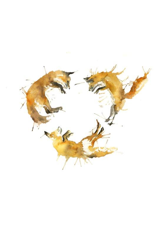 Fox Circle Canvas Print