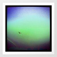 Seagull & Rainbow Art Print