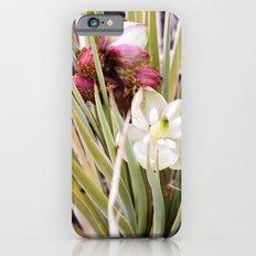 Yucca Flowers in Bloom iPhone 6 Slim Case