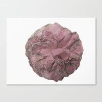 Full Camellia Pink Canvas Print