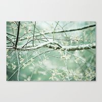 Bright Branches Canvas Print