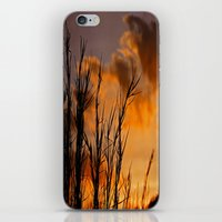 Almost Gone iPhone & iPod Skin