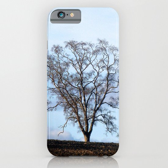 early spring iPhone & iPod Case