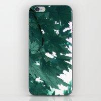 Turquoise iPhone & iPod Skin