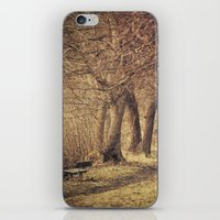 Sit By Or Walk On? iPhone & iPod Skin
