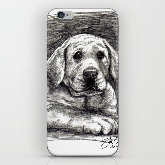 Yellow Lab iPhone & iPod Skin