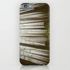 Rainforest of the Pacific Northwest iPhone 6s Slim Case