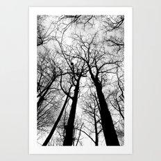 As Darkness Falls Art Print