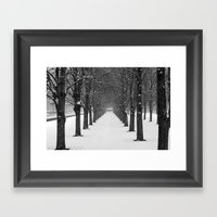 Science Trees In The Sno… Framed Art Print