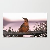 Canvas Print featuring Opening bird by Martin Woutisseth