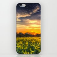 April Afternoon Field iPhone & iPod Skin
