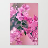 Mother's Day series - light pink Canvas Print