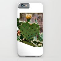 iPhone & iPod Case featuring Sonoran Love / Arizona by Fairlady