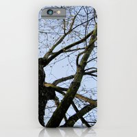 Youth Upon My Limbs I iPhone 6 Slim Case